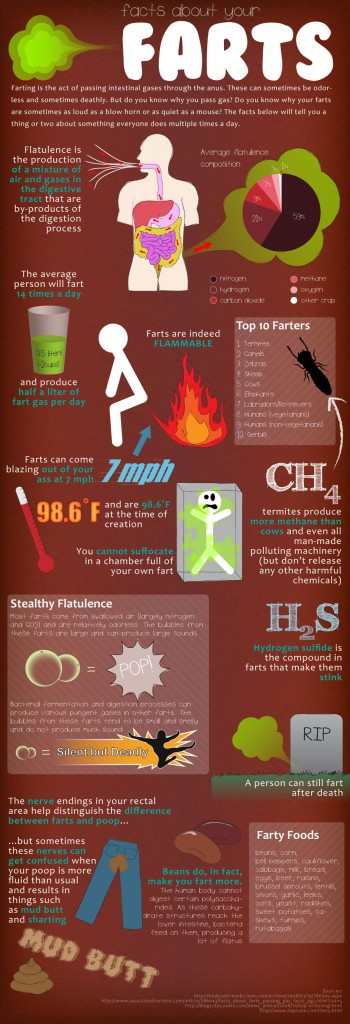 image 350x1024 Fart Facts