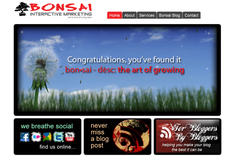 Bonsai Interactive Marketing Integrated Marketing Social Media Mobile Apps Print Media and Design Content Marketing 1288560905998 13 Sweet Looking Sites Powered by Headway (but Mainly Me Rambling About Headway)