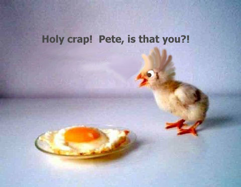 Funny Easter SuperPost Sunday   Weekly Roundup #27
